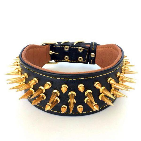 hundehalsband stacheln gold